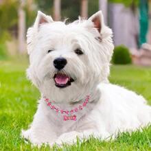 1 Stueck Hundehalsband mit Strass Dekor