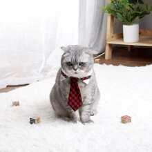 Katze Halsband mit Karo Muster