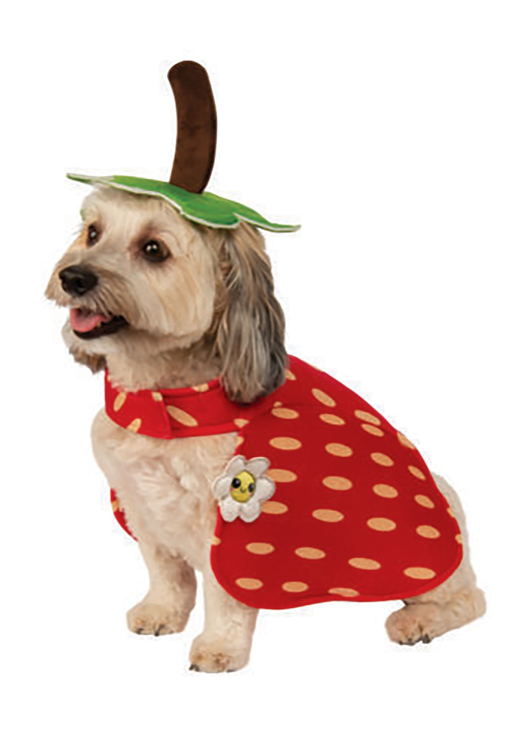 Dog Yummy Strawberry Costume