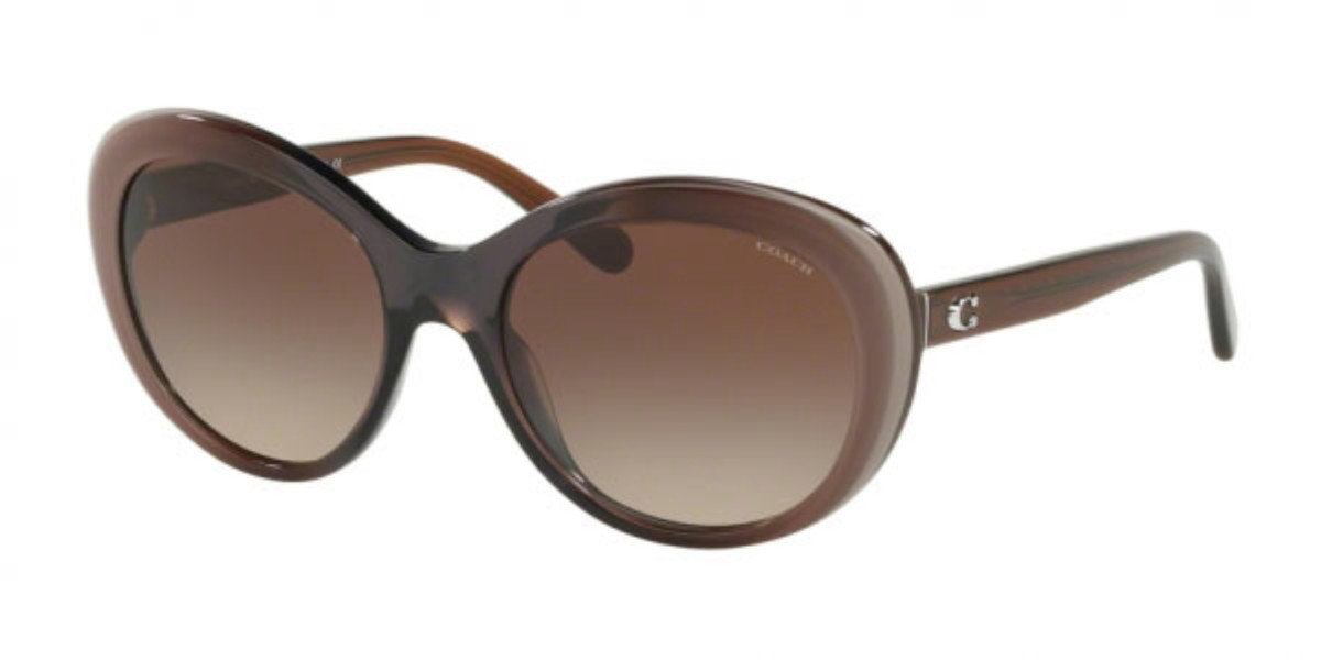 Coach HC8259 553413 Women's Sunglasses Brown Size 54