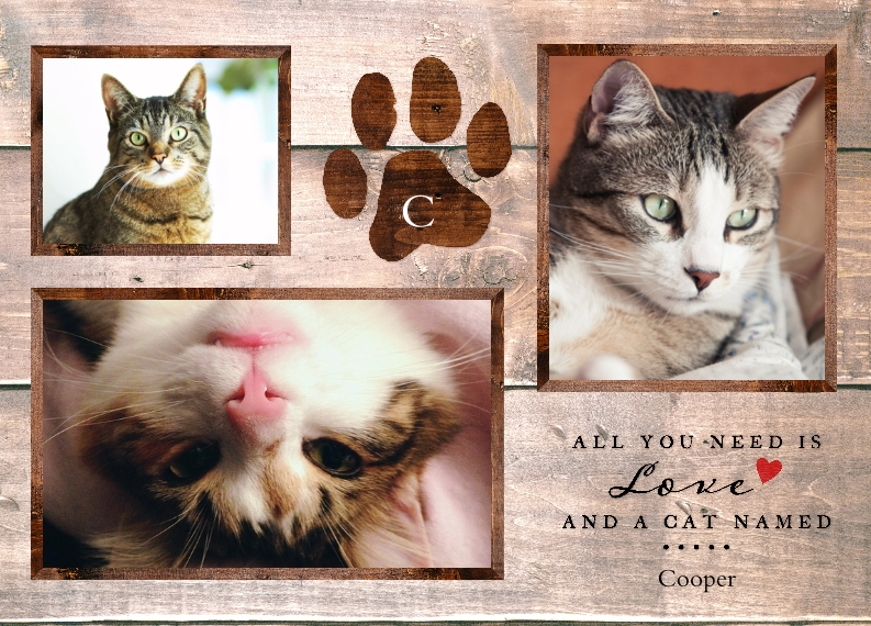 Pets Personalized Floor Mat, Gift -The Kind Kitty