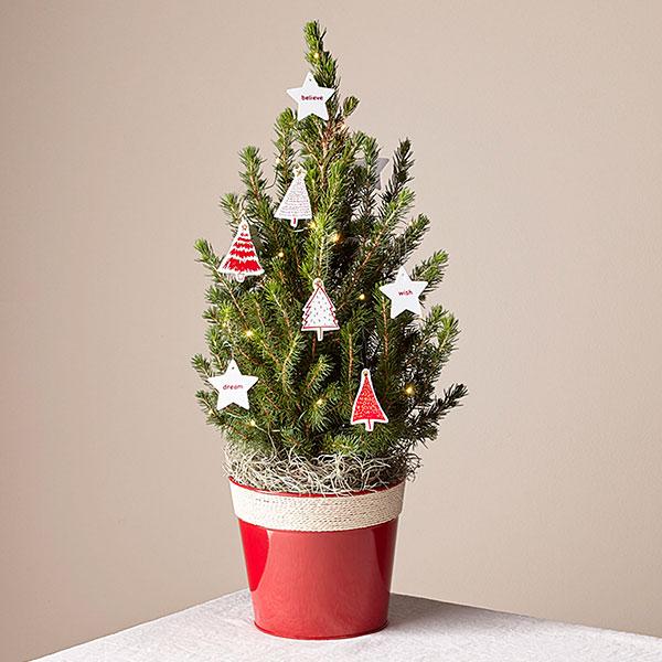 Fresh & Festive Tiny Tree