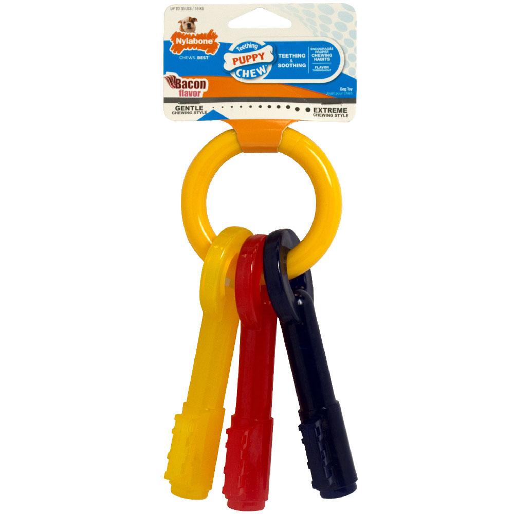 Nylabone Puppy Teething Keys - LARGE (7.75