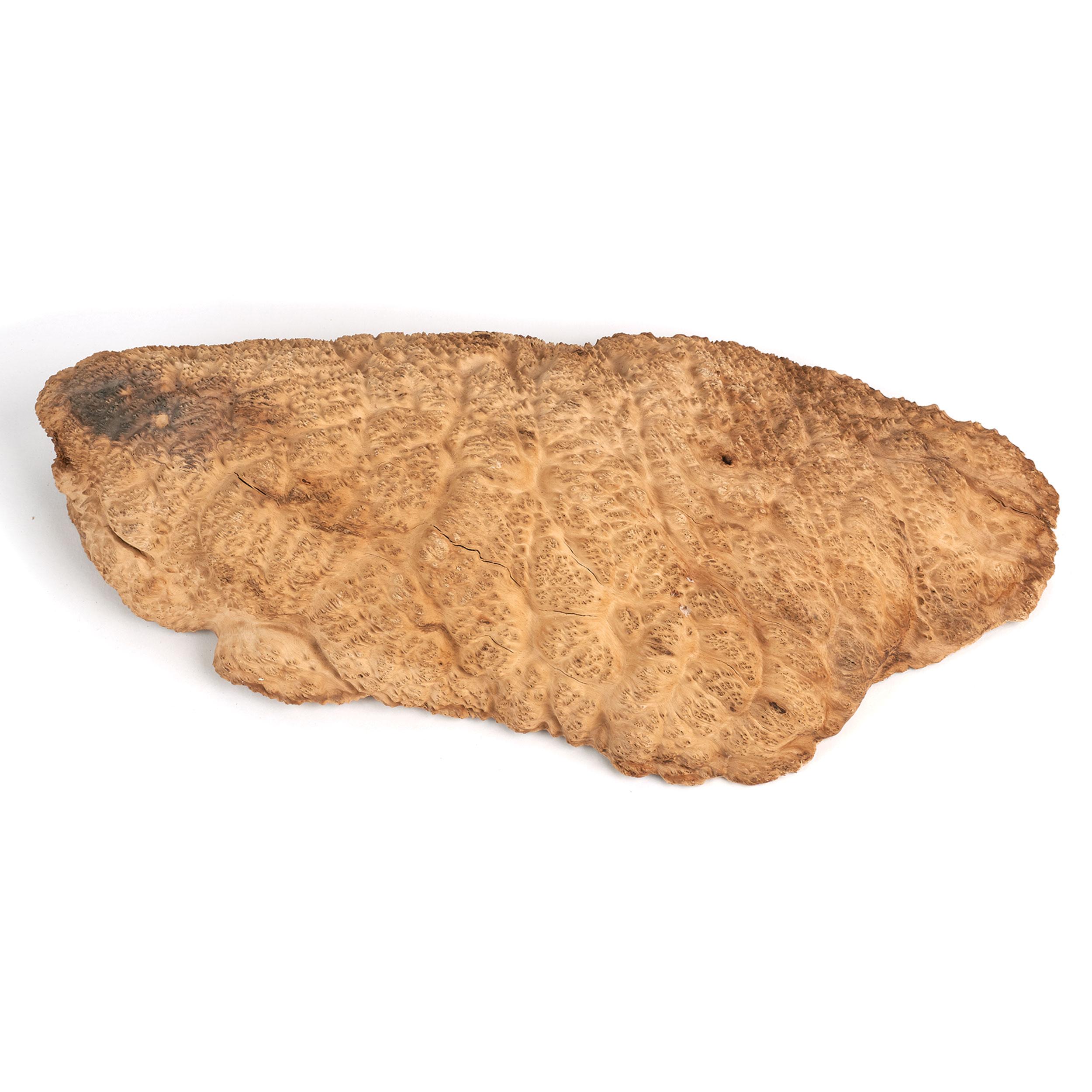 Australian Brown Mallee Burl Cap 2kg-4kg