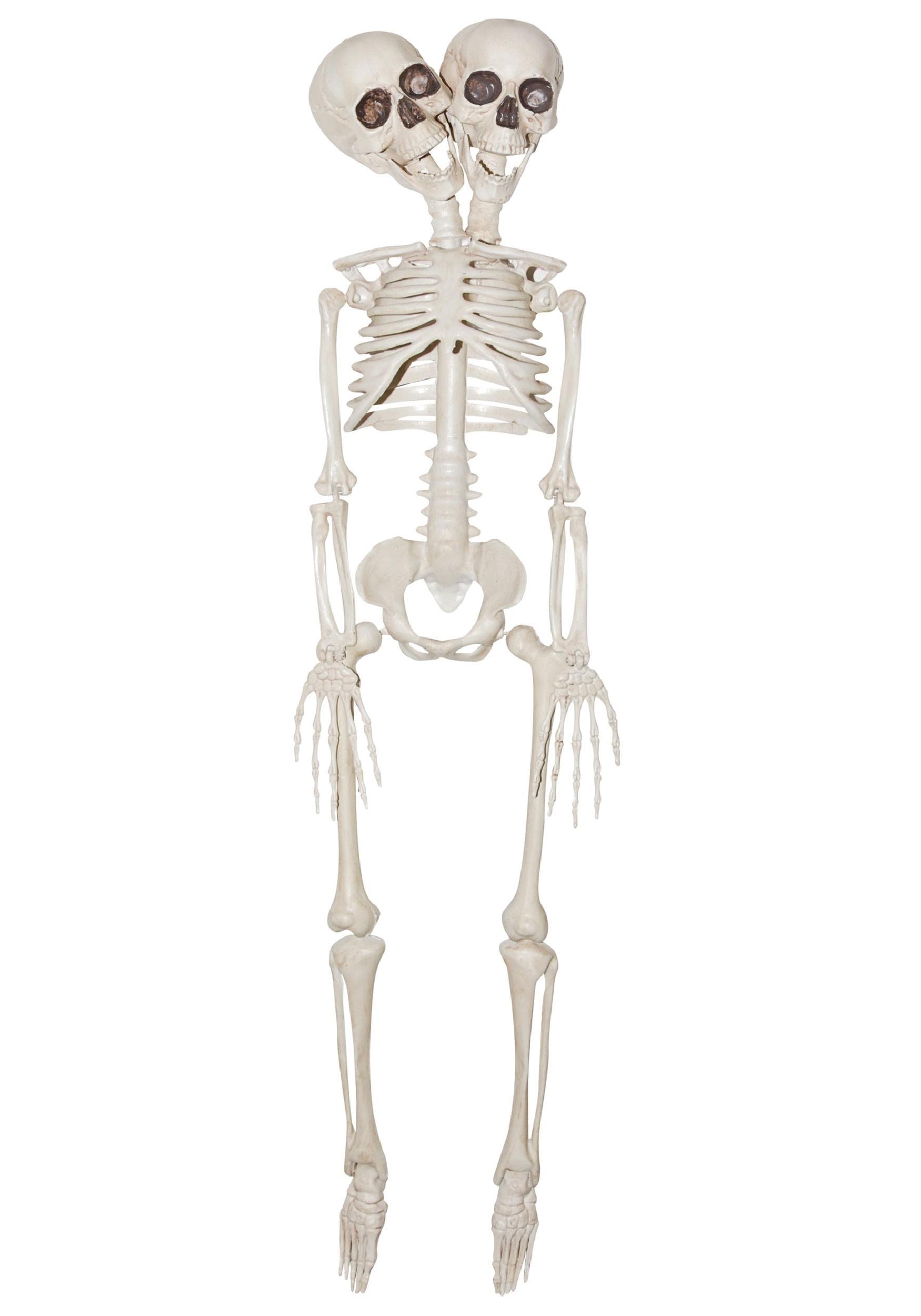 2 Headed Skeleton 20