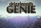 Drizzlepath: Genie Steam CD Key