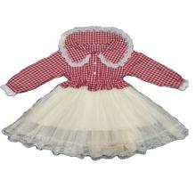 Toddler Girls Contrast Mesh Peter Pan Collar Dress