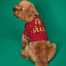 1pc Letter Graphic Dog Sweater