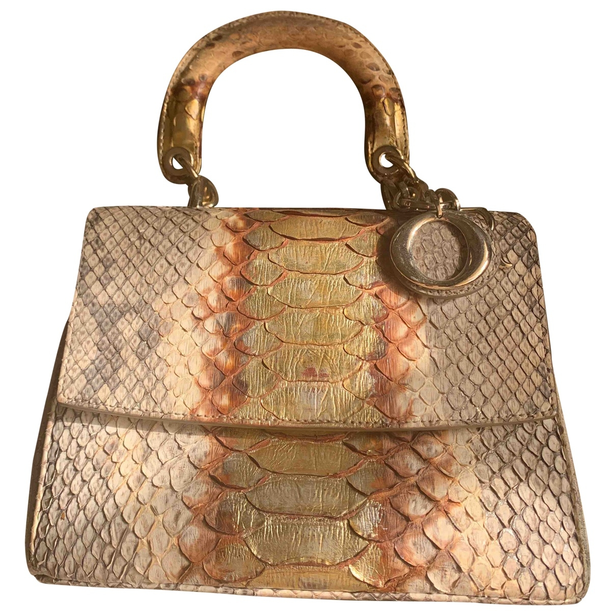 Dior Be Dior Handtasche in  Gold Python