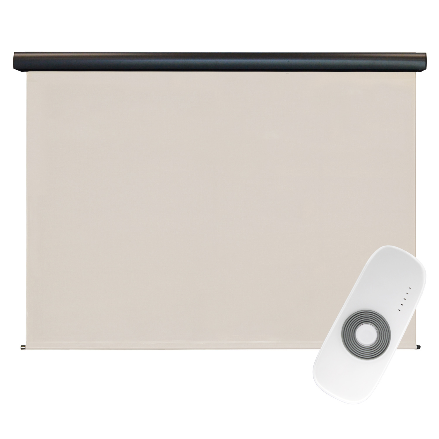 Premier Rechargeable Motorized Outdoor Sun Shade with Protective Valance, 7' W x 8' L, Palm