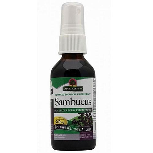 Sambucus Black Elder Berry Spray 2 oz by Nature's Answer