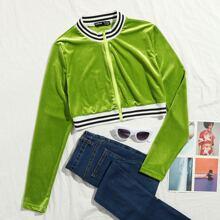 Zip Up Striped Velvet Jacket