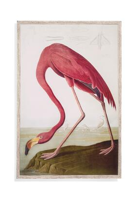 Trade Collection 9901-130EC 34W x 50H Flamingo Framed Art with Wood Frame Protexture Material in