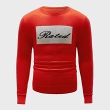 Men Letter Graphic Crew Neck Sweater