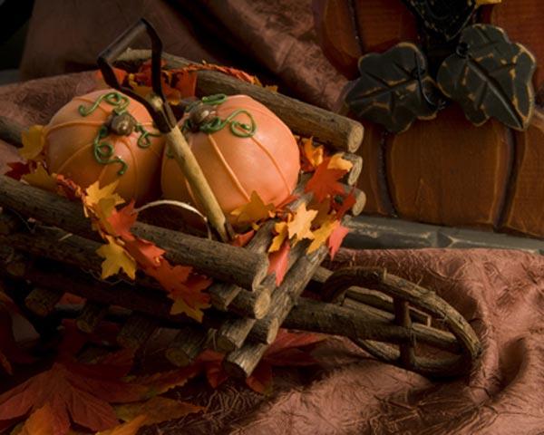 Pumpkin Patch Gourmet Brownie Favors