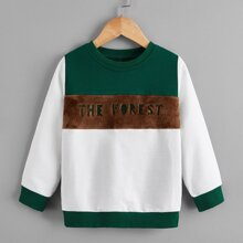 Sweatshirt mit Buchstaben Stickereien und Farbblock