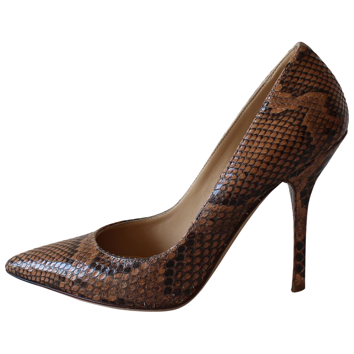 Dolce & Gabbana \N Pumps in  Braun Python