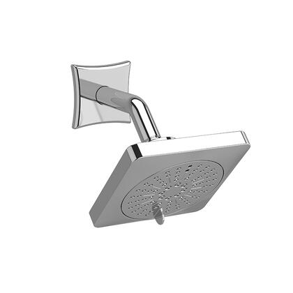 326BN 2-Jet Shower Head with Arm 2.0 GPM  in Brushed