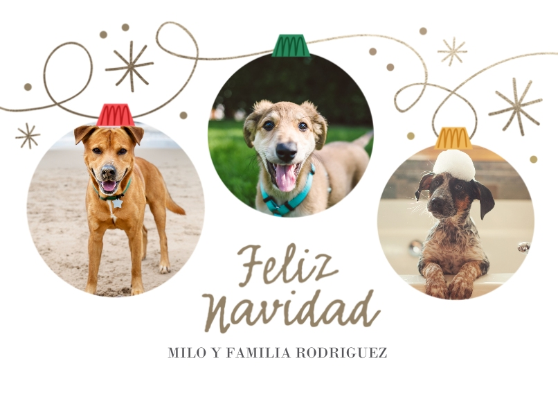 Holiday Photo Cards 5x7 Cards, Premium Cardstock 120lb, Card & Stationery -Feliz Navidad Ornaments