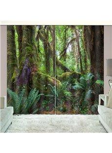 3D Blackout Dreamy Woods Natural Drapes Print Curtain