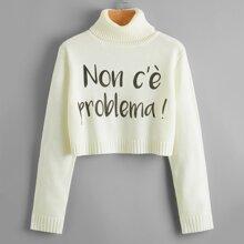 Turtleneck Letter Graphic Crop Sweater
