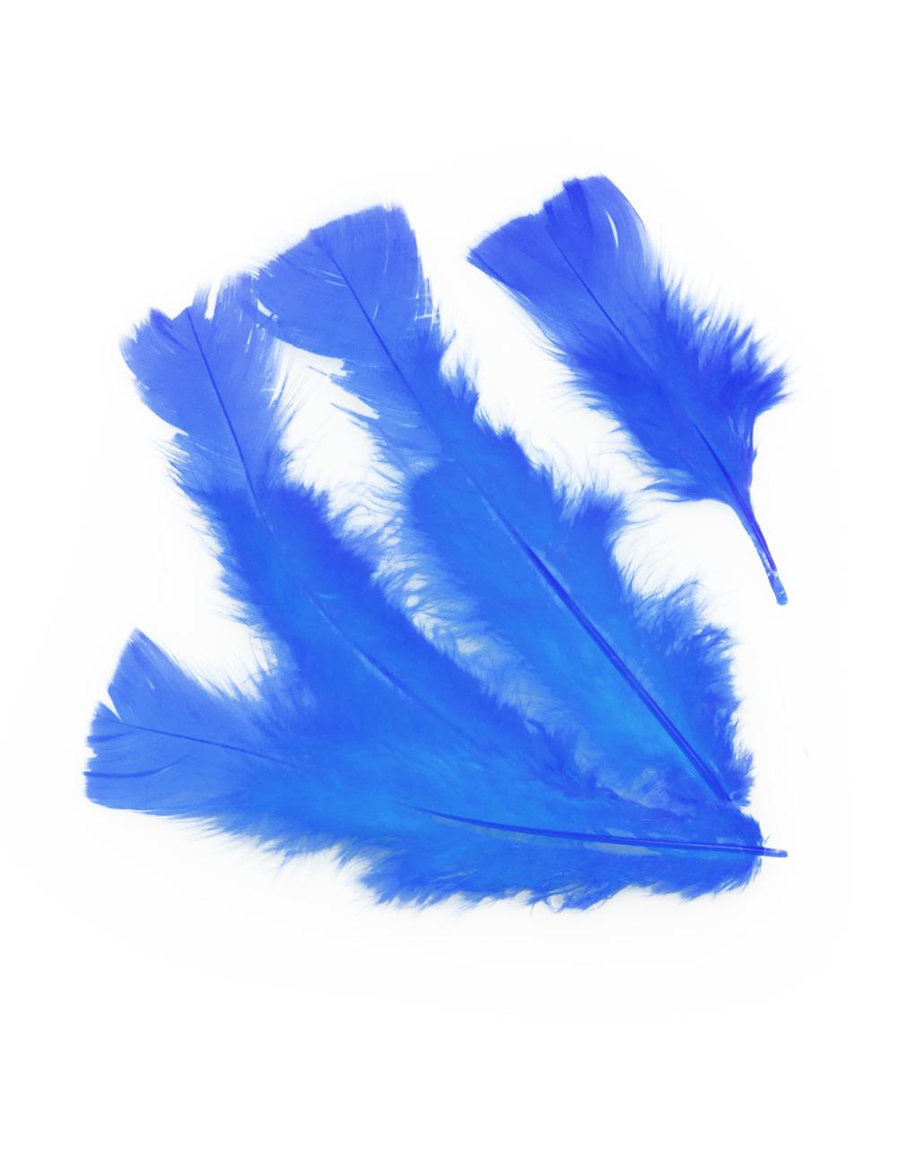 Kostuemzubehor Federn 100er-Pack blau