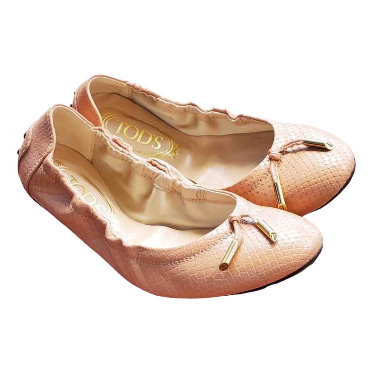 Bailarinas de Cueros exoticos Tods