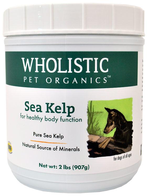 Wholistic Sea Kelp (2 lb)