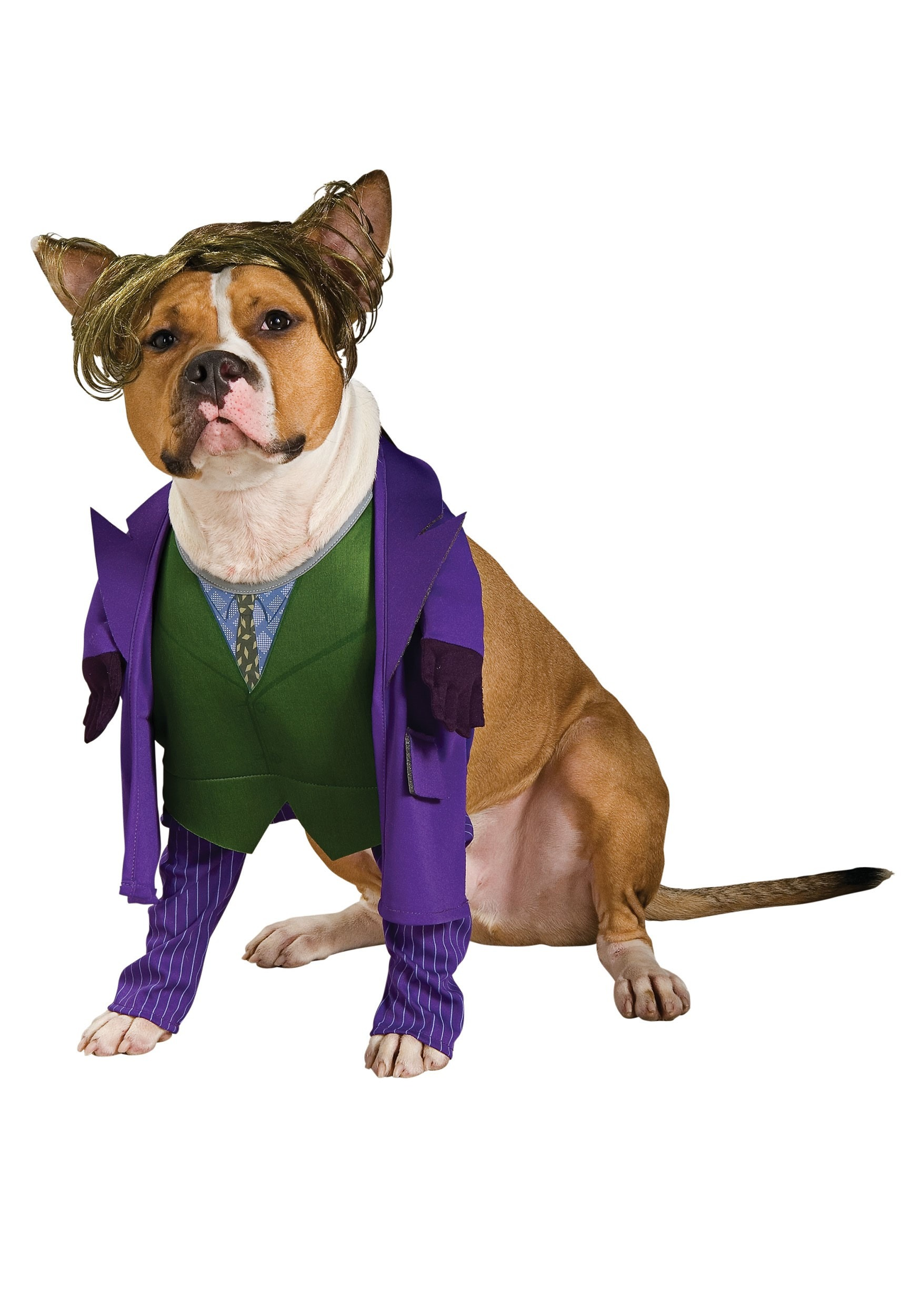 Batmans Joker Pet Costume