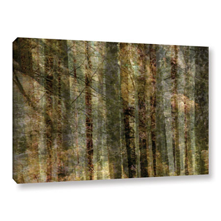Brushstone Wood For The Trees Gallery Wrapped Canvas Wall Art, One Size , Black