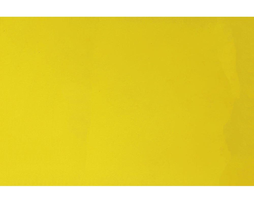 Steinjager J0048713 Lemon Peel Touch Up Paint, Aerosol 12 fl oz