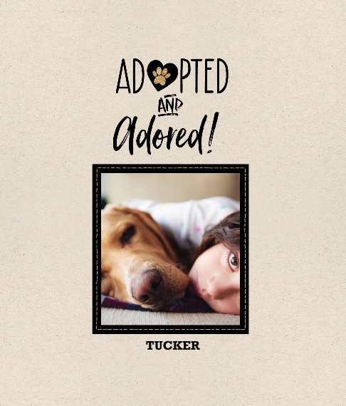 Pet Framed Canvas Print, Chocolate, 8x10, Home Décor -Pet Rescue