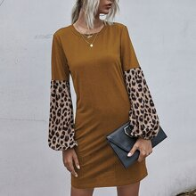 Contrast Leopard Panel Sleeve Tee Dress