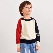 Toddler Boys Contrast Raglan Sleeve Sweater