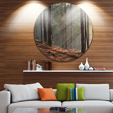 Design Art Rays of Sun in Dense Forest Landscape Oversized Circle Wall Art, One Size , Brown