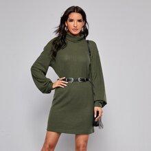 Turtle Neck Rib-knit Dress Without Belt