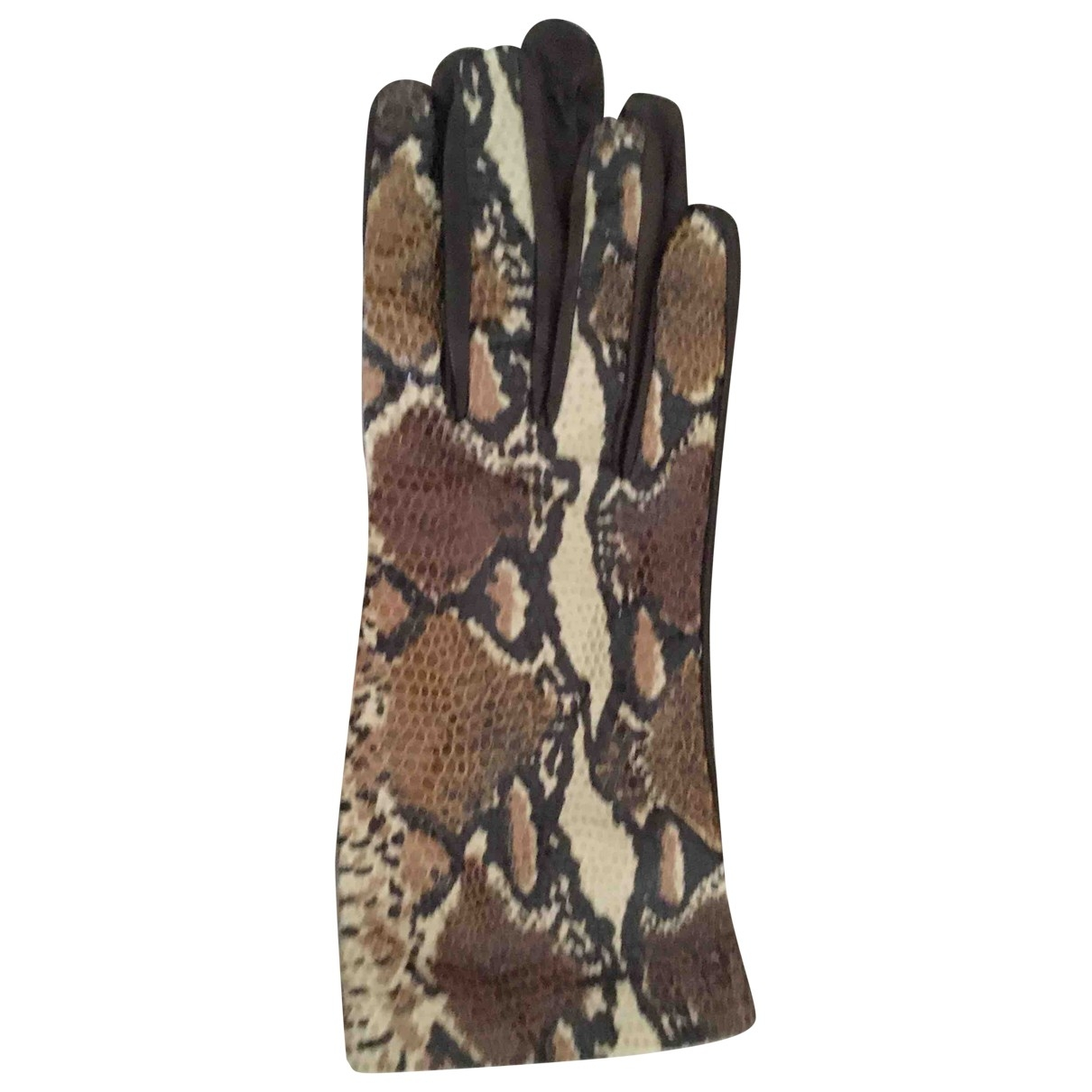 Non Signé / Unsigned \N Multicolour Water snake Gloves for Women 7.5 Inches