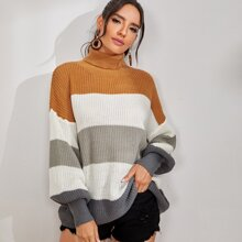 Color Block Turtle Neck Sweater