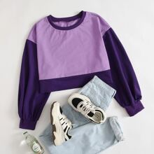 Plus Colorblock Drop Shoulder Crop Sweatshirt