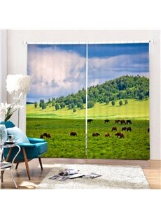 Cow Eating Grass on Field Printing 3D Curtain