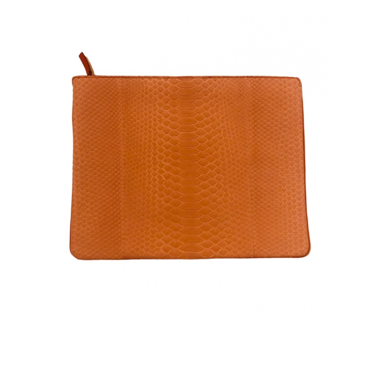 Delvaux \N Orange Python Clutch bag for Women \N
