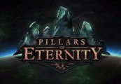 Pillars of Eternity EU Steam CD Key