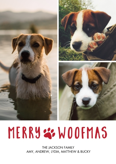 Christmas Photo Cards 5x7 Cards, Premium Cardstock 120lb with Rounded Corners, Card & Stationery -Christmas Pet Woofmas Collage by Tumbalina