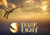 Dark and Light EU Steam Altergift