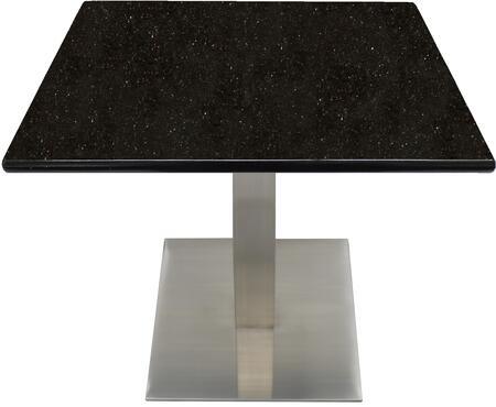 G206 30X30-SS05-17D 30x30 Black Galaxy Granite Tabletop with 17