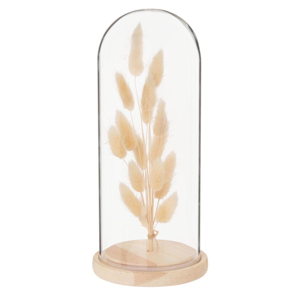 Trockenblumen unter Glas-und Kiefernholzglocke, H25