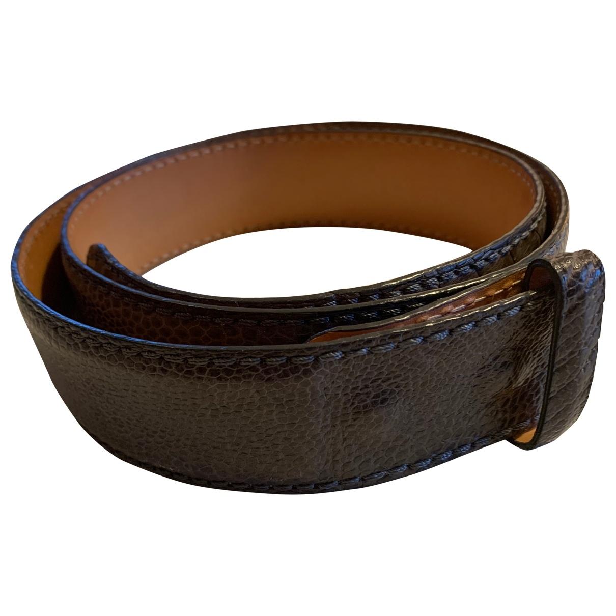Cinturon de Avestruz Reptiles House