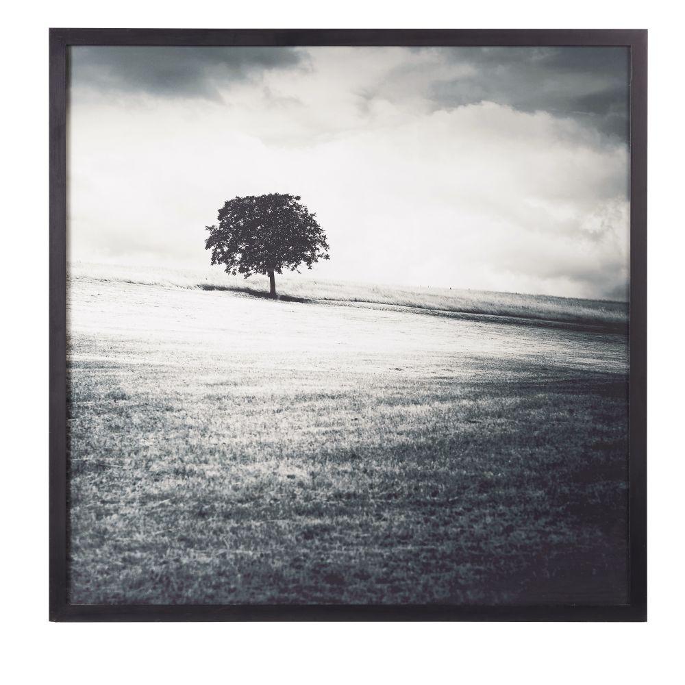 Bild bedruckt mit Landschaftsmotiv, schwarz und weiss 100x100