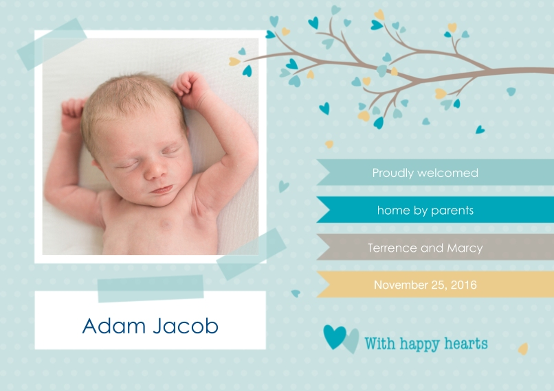 Newborn 5x7 Cards, Premium Cardstock 120lb with Rounded Corners, Card & Stationery -Lovely Branch - Boy