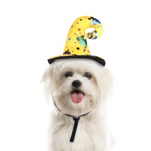 1pc Halloween Pattern Dog Hat
